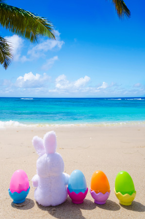 27080617 - easter bunny and color eggs on the sandy beach by the ocean